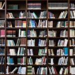 Bücher lesen für Vielbeschäftigte