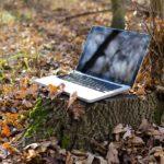 Arbeiten, immer überall: Das Remote Only Manifesto